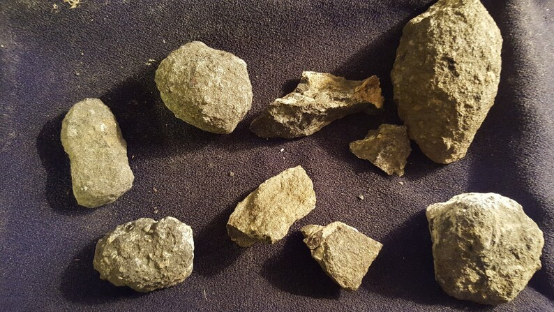 Kimberlite 400 Carat Lot Diamond Ore Hand-Mined In Colorado