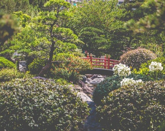 The Japanese Garden - Photograph - FineArt