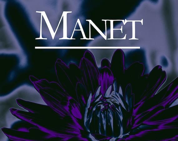 Manet, suivi de la Baudelairienne, par Lucille Cottin (Recueil de 2 nouvelles)