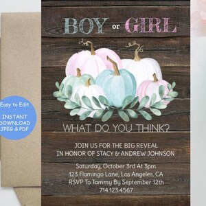 Gender Reveal Diaper Raffle What Will it Bee Baby Shower Invitation Instant Party Fall Invite Boy Girl Surprise Rustic Announcement DOWNLOAD