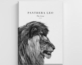 The Lion Jungle King Safari Animal Print Large Canvas Illustration Art Print Home Wall Art Nursery Decor Perfect Gift | IC16