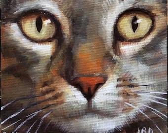"Alert Tabby, 4x4"" mini cat oil painting on canvas ORIGINAL"