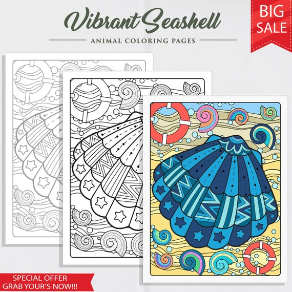 Vibrant Seashell Printable Coloring Page Coloring for Adults