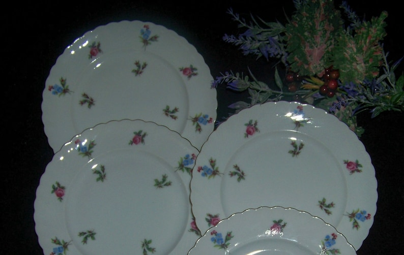 Royal Tettau China Dresden Flowers Gold Rim Bread and Butter Plates 4
