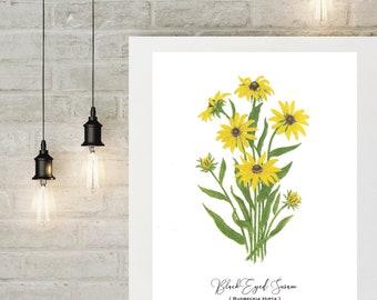Black Eyed Susan Botanical Print