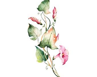 Flowers Original Watercolour Painting 80
