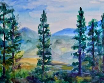 Bachledova dolina. Meadow in High Tatras.