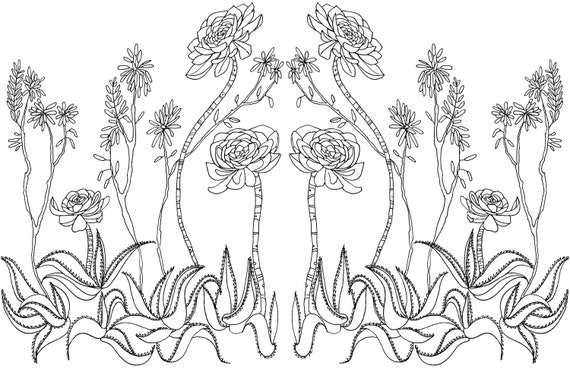 Coloring Pages For Adults Nature Pictures - Whitesbelfast | 369x570