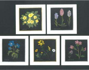 Wildflower Greetings Cards - Set of 5