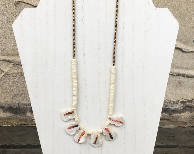 Shells and Dummer Sand