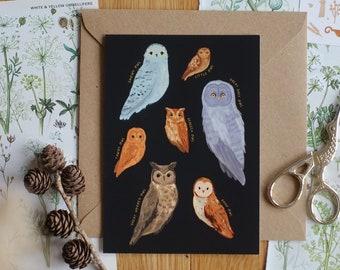 Illustrated Owl Postcard, Identification Chart, Owls, Wildlife, Greeting Card, Mini Print, Wall Decor, A6