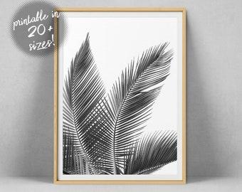 253299f0f2 Palm Leaf Wall Art, Palm Leaves Print, Black And White Palm Tree Photo, Palm  Photography Printable Tropical Art Minimalist Poster Wall Decor
