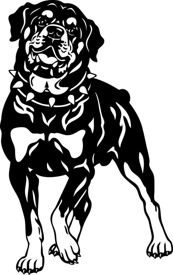 Rottweiler Silhouette / Dog in SVG / Eps / Dxf / Jpg files ...