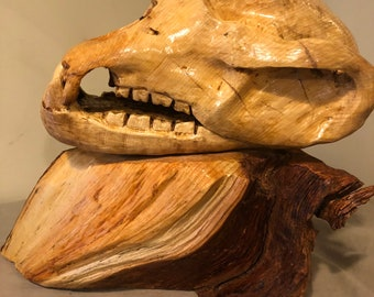 Spruce wood, spruce wooden, bear, grizzley, grizzley skull replica made of spruce