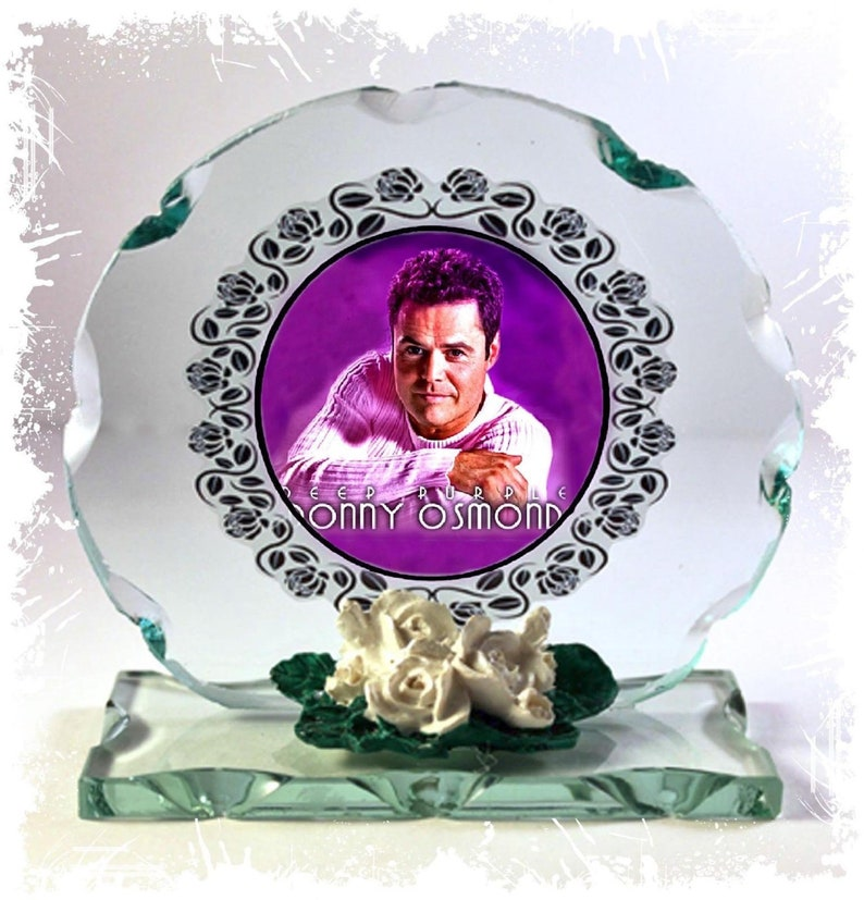 Donny Osmond Puppy Love Go Away Little Girl  Cut Glass image 0