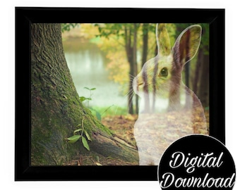 Rabbit Art Digital Download