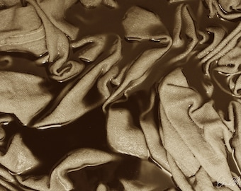 Folds in Sepia