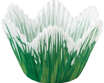 Wilton Muffin and Cupcake Liners