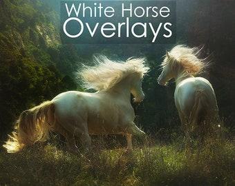 White Horse Photoshop Overlays
