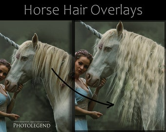REAL Horse Hair Overlays TRANSPARENT
