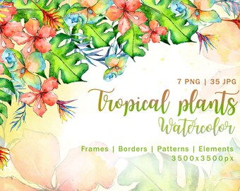 Tropical plant PNG watercolor set