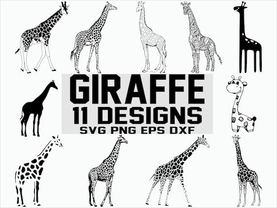 Giraffe Svg Wild Life Svg Africa Animals Svg Clipart Etsy