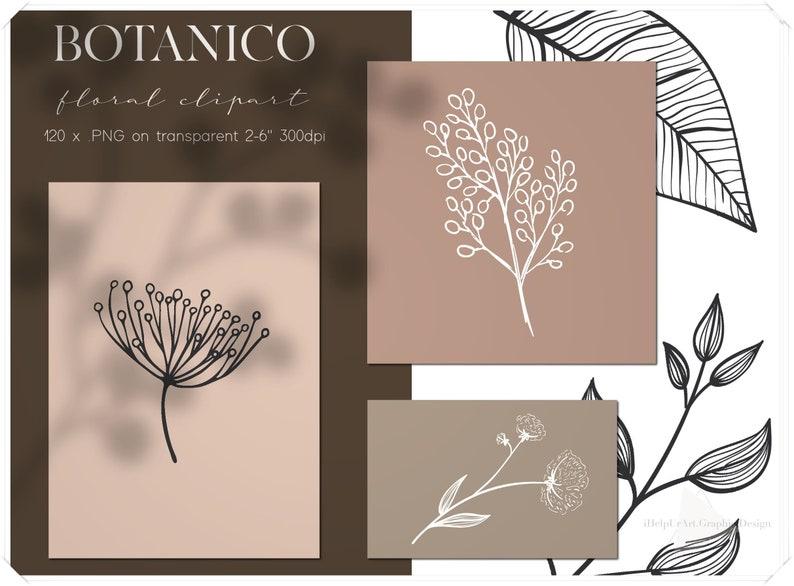 Line Art Botanical Clipart  Linear Floral Design Kit  image 0