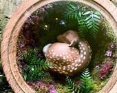 Sleeping Deer - Woodturne...