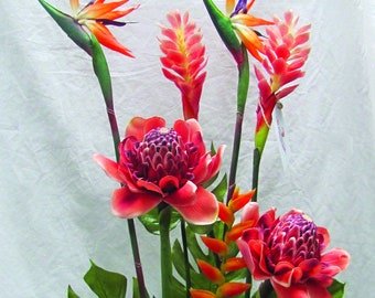 Large Tropical Botanical contains Bird of Paradise, Shining Bird of paradise, Torch Ginger, Spray Ginger, Heleconia and Leaf Split Phylo.