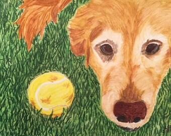 Custom Dog Portrait 3