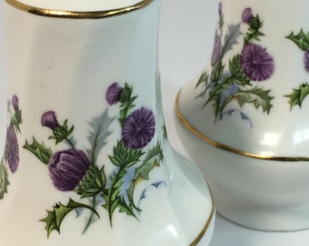 Salt and Pepper Shakers, Porcelain, Thistle