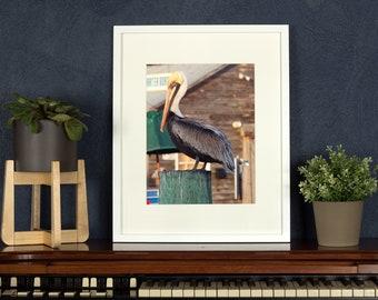 Pelican Photograph, Key West, Beach Decor Florida Art, Bird Print, Large Wall Decor, Coastal Decor, Nautical Seascape, Coastal Photography,
