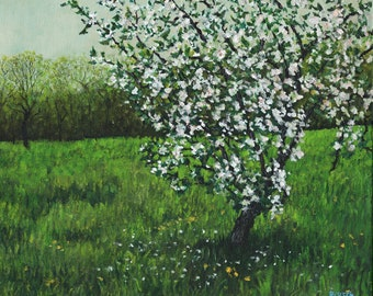 Apple Blossoms at the John Greenleaf Whittier Birthplace signed print