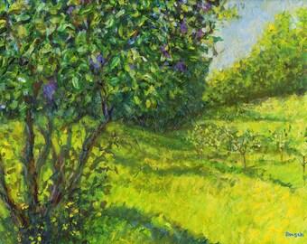 Lilac Bush Signed Print by Mark Reusch