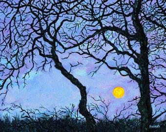 Springtime Super Moon Signed Print