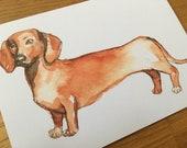 Dachshund Dog Postcard - Format A6 - Greeting Card Illustration