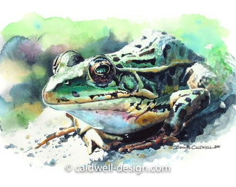 Chiricahua Leopard Frog Watercolor Archival Print