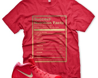 464048011b577 New SUCCESS FACTS T Shirt for Nike Air Vapormax Sherbert | Etsy