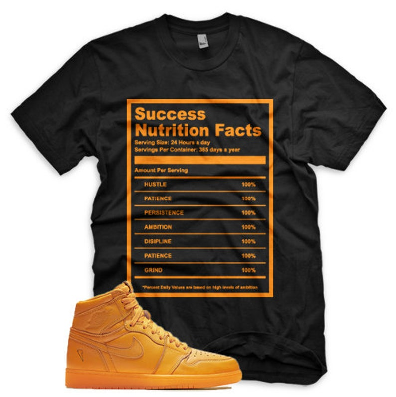 ad53d1d21398b6 SUCCESS FACTS T Shirt for Jordan 1 Retro Gatorade Orange Peel