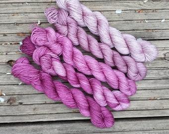 Hand-dyed 100% Superwash Merino, 5 mini-skein set, 100g total