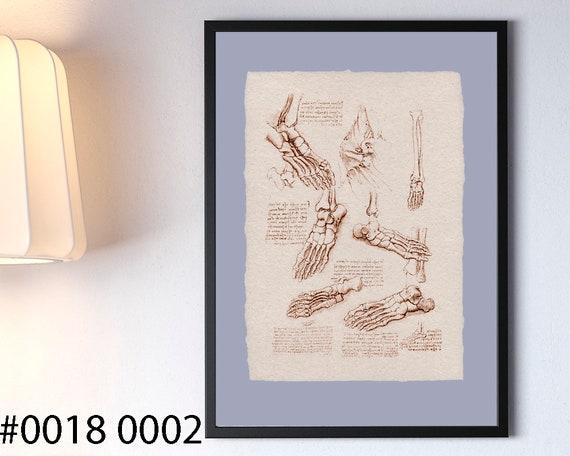 Leonardo Da Vinci Skeleton Foot Anatomy Art Anatomy Study Etsy