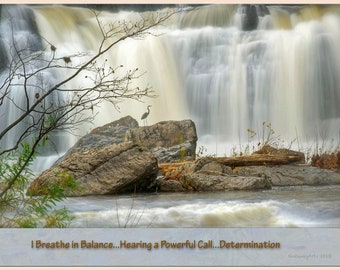 The Art of Haiku: Blue Heron Falls- Balance/Power/Determination