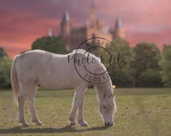Castle Princess Unicorn Digital Backdrop