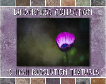 Photoshop Textures - Wilderness Collection - a set of shabby photoshop overlays for creative editing