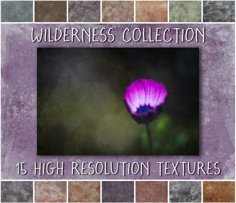 Photoshop Textures  Wilderness Collection  a set of shabby image 0