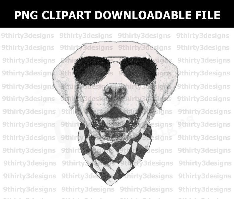 Cool Labrador Retriever File, Cute Dog, Digital Printable File