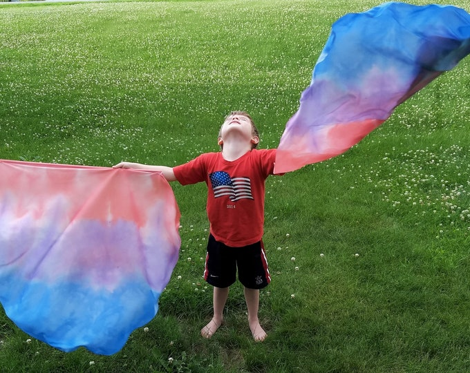Child Worship Flags, Dance Flags, Praise Flags, Set of Two, Angel Wings, Hand Dyed -Joyful Noise