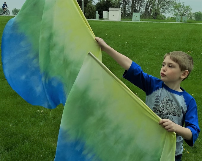 Child Worship Flags, Set of Two, Angel Wings, Hand Dyed - New Life