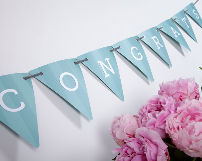 Pale Blue Wide Stripe Customisable Bunting with 80 Alphabetical Reversible Flags and Wire Bulldog Clips for Memos and Photos - Decked Out