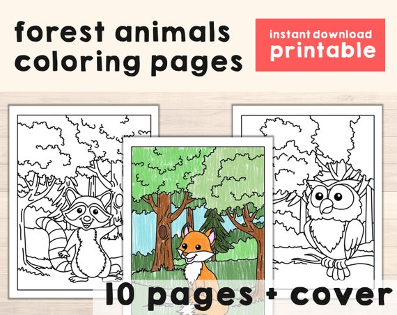Forest Animals Coloring Pages  Woodland Theme Printable Art